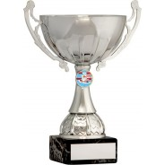 Silver Cup Trophy with Swimming Insert