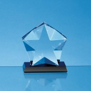 Optical Crystal Facetted Star Mounted on an Onyx Black Base