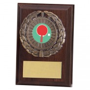 Shannon Cherrywood Plaque with Table Tennis Insert