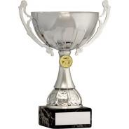 Silver Cup Trophy with Triathlon Insert