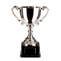 Canterbury Collection Nickel Plated Cup