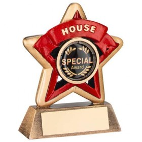 Mini Star 'House' Trophy - Bronze/Gold/Red