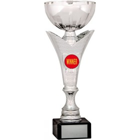 Silver Cup Trophy with Winners Insert